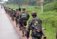 RDC: une ONG accuse l'armée et l'ONU de passivité lors d'un massacre
