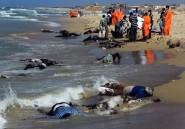 Libye: 170 corps de migrants africains retrouvés