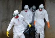 Ebola: le plan de bataille des experts de l'OMS attendu