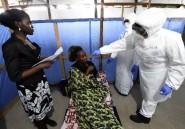 Ebola: les Etats-Unis tentent de circonscrire le virus qui s'étend en Afrique