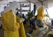 """Ebola: MSF célèbre le """"1.000e survivant"""" sorti de ses centres en Afrique de l'Ouest"""