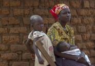 Ouganda: une femme contre des vaches, la dot alimente les violences conjugales
