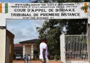 Côte d'Ivoire: Aïcha, 11 ans, héroïne malgré elle de la lutte contre le mariage précoce
