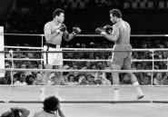 """""""Combat du siècle"""": 40 ans après, Mohamed Ali toujours vainqueur par KO"""