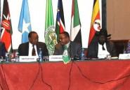 Soudan du Sud: reprise des combats malgré de récentes discussions de paix
