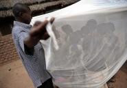Paludisme: deux fois moins de personnes décèdent depuis 2000