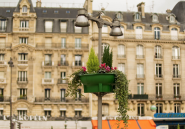 Une enquête inédite révèle l'immense patrimoine immobilier parisien de dirigeants algériens