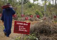 Le virus Ebola va plomber à long terme l'économie des pays touchés