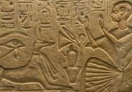 Des millions de chiens momifiés découverts dans des catacombes en Egypte