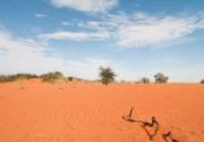 Une nappe phréatique géante pourrait changer le visage de la Namibie