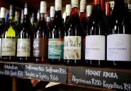 Le Swartland, eldorado des nouveaux vignerons sud-africains