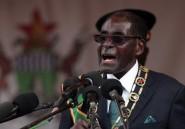 Le patronat français veut des garanties pour investir au Zimbabwe