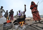 Sur les îles du lac Tchad, les naufragés des attaques de Boko Haram