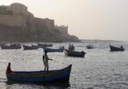 """Premier producteur d'Afrique, le Maroc veut moderniser son """"or marin"""""""