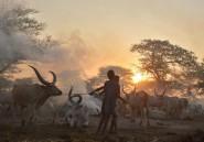 Un conflit clanique ravage le centre du Soudan du Sud, épargné par la guerre civile