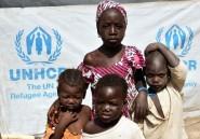 Boko Haram: le CICR craint une crise humanitaire dans la région du lac Tchad