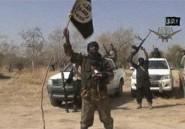 Afrique: sommet régional sur Boko Haram mercredi