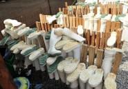 Des tests japonais pour détecter Ebola en moins de 12 minutes