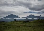 Trois agents de la mission de l'ONU en RDC enlevés au Nord-Kivu