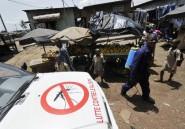 Paludisme: le vaccin expérimental offre une protection limitée