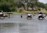 Nigeria : Boko Haram reprend une localité du Nord-est