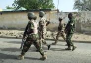 Nigeria: 28 miliciens tués dans un raid de l'armée dans le centre