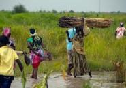 Soudan du Sud: offensive rebelle sur Malakal, en proie aux combats