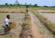 L'Afrique garde le cap de la croissance, mais gare