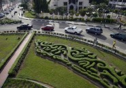 Des micro-jardins