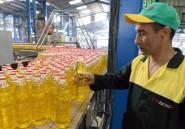 Le Maroc renoue avec l'huile d'olive, un pari incertain