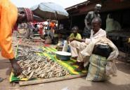Nigeria: plus de 30 morts dans une explosion