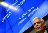 Opep: consensus en vue mais inquiétudes sur les prix