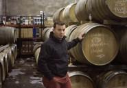 En 2015, le meilleur vin du monde est sud-africain