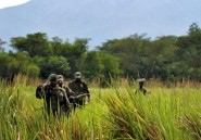 RDC/Parc des Virunga : le groupe pétrolier Soco accusé d'avoir acheté un officier congolais