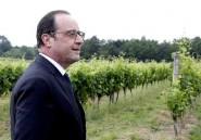 En Algérie, Hollande ne se mêlera pas de la succession de Bouteflika