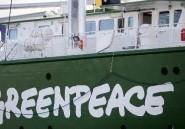 """RDC: l'industrie du bois accuse Greenpeace de vouloir mettre la forêt """"sous cloche"""""""