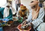 La ruée vers l'or qui secoue Agadez
