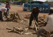 Pour contrer l'avancée du désert et la déforestation, le Niger promeut son gaz