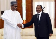 """Lutte contre Boko Haram: Cameroun et Nigeria """"déterminés"""""""