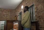 Rhinocéros: la justice sud-africaine impuissante face au braconnage