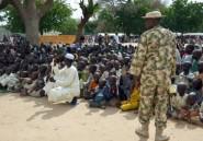 Nigeria: les chevaux interdits dans le nord-est après des attaques de Boko Haram