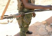 Centrafrique: combats entre forces internationales et ex-rebelles Séléka