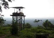 """Pétrole sous les Virunga : Kinshasa indique que les résultats des tests sont """"positifs"""""""