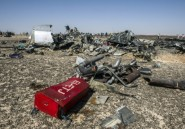 "Egypte: la Russie admet un possible acte ""terroriste"" dans le crash de l'avion"