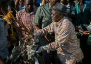 Tanzanie: le président Magufuli nettoie les rues de Dar es Salaam comme un citoyen lambda