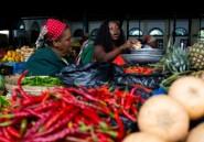 Mozambique: crise des matières premières et investissements publics hasardeux font plonger l'économie
