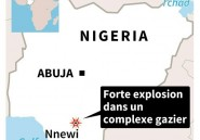 """Nigeria: """"des dizaines de mort"""" dans l'explosion d'un complexe gazier"""