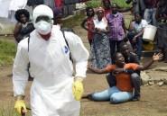 Ebola: portrait d'un virus tueur qui a fait plus de 11.000 morts