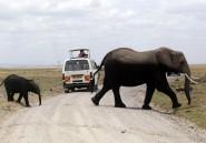 Les Kényans découvrent que le tourisme dans leur pays n'est pas réservé aux étrangers
