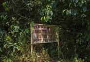 À Zika, la forêt ougandaise où est né le virus, beaucoup de questions restent sans réponses